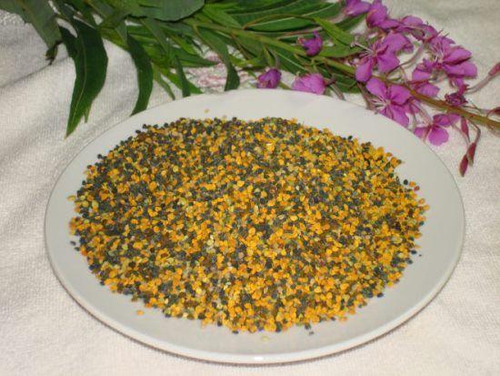 пчелиная пыльца польза