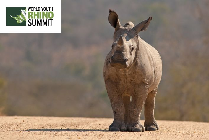 What's that you say?! #3Days until the #RhinoSummit2014?? YES PLEASE! We think the pic below deserves a share... don't you?  www.youthrhinosummit.com #LetOurVoicesBeHeard