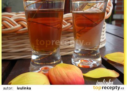 Babské slzy recept - TopRecepty.cz(černé pivo a vodka)