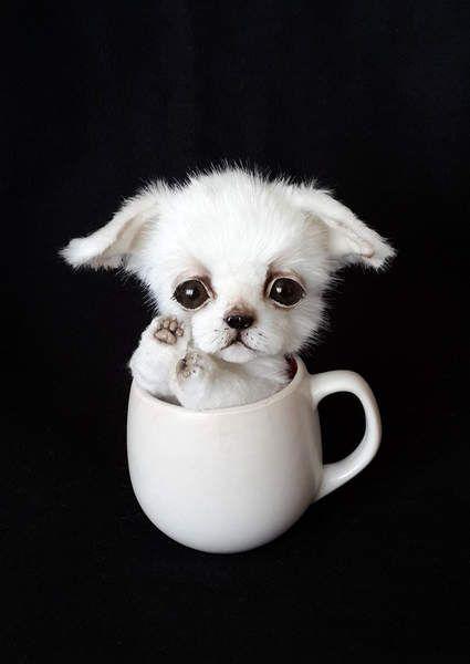 Chihuahua puppy Cupcake By Vakulina - Bear Pile