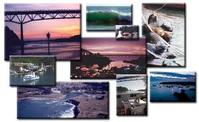10 best crabbing in bodega bay and crab fishing bodega bay for Fort bragg fishing charters