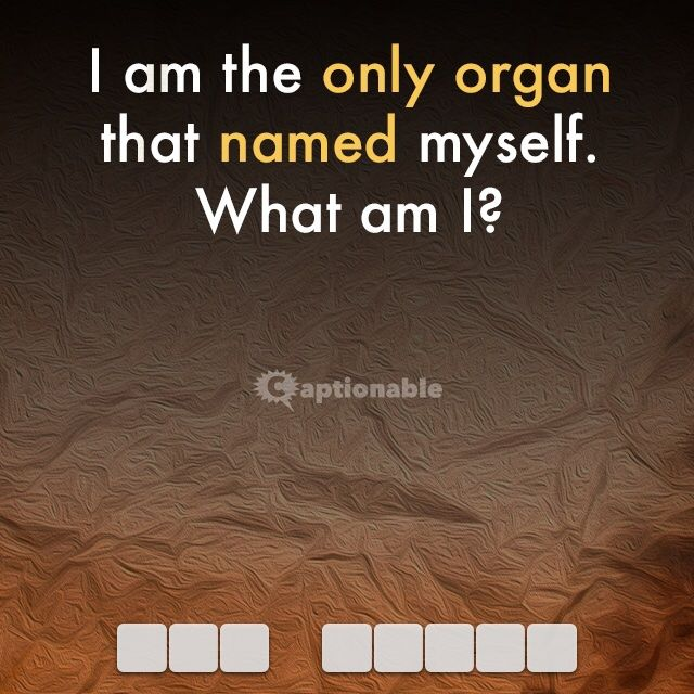 Hint: This riddle is smart! Click to solve online. #riddle #anatomy