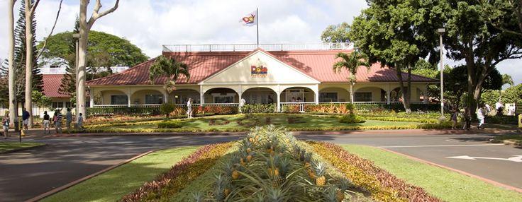 TO DO | Dole Pineapple Plantation Oahu Hawaii | Dole Plantation Maze | Pineapple Tours