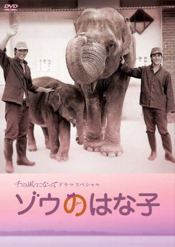 2007,ゾウのはな子