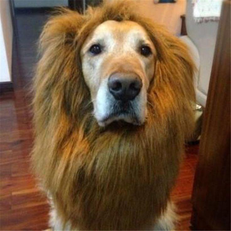 Pet Wigs Costume Dog Lion Mane Hair Festival Party Fancy Dress Halloween Costume Pet Lion Hair Pet Hair Accessories #Affiliate