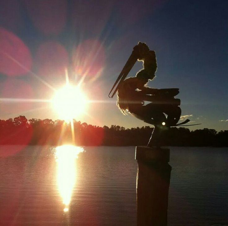 Currumbin Creek River Sunsent with sillouette Pelican statue ~ Angels Unisex Jewellery