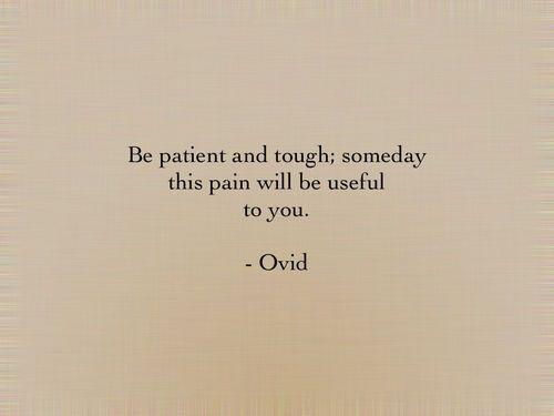 Sii forte e paziente, un giorno questo dolore ti sara` utile - Ovidio