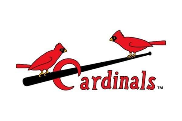 St Louis Cardinals Logo And Symbol Meaning History Png St Louis Cardinals Baseball Mlb Team Logos Cardinals