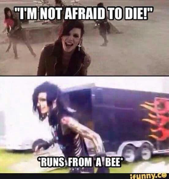 Hahahaha Andy :'D...obwohl, dass mit der Biene könnte ich auch sein. In solchen Momenten kann ich einfach zehnmal so schnell laufen ':D