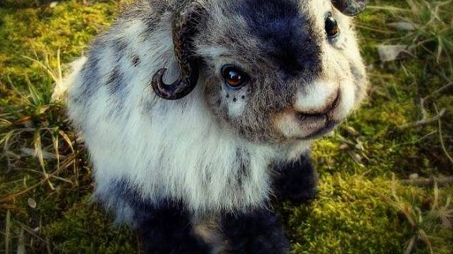 10 Realistic Stuffed Animals You Won't Believe Are Fake