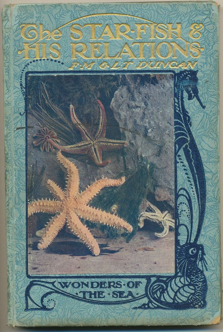 """The Starfish and His Relations"" by FM and LT Duncan, 1920."