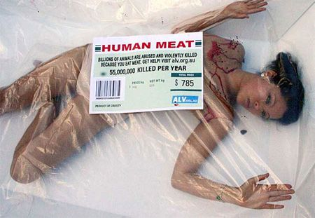 Human Meat, Billions Of Animal Are Abused And Violently Killed Because You Eat Meat, Get Help! Visit...