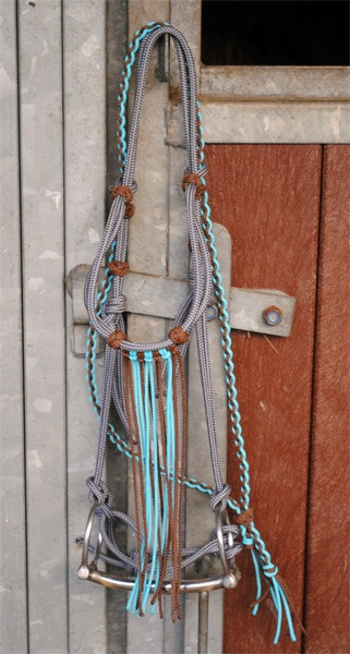 bridle love the turquoise! Going to be Luna's color!