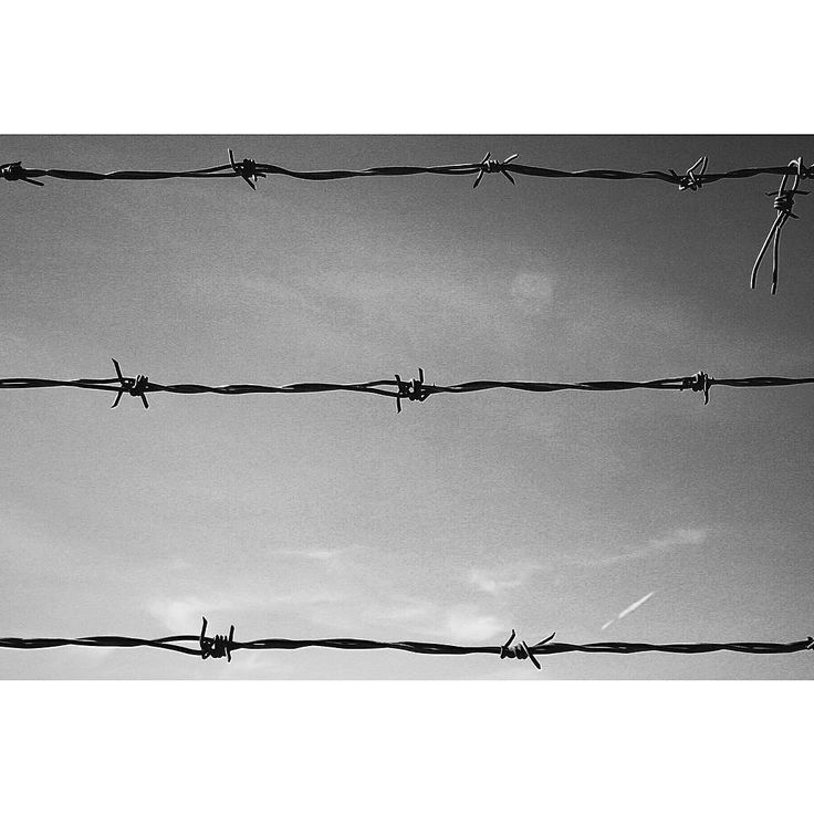 {165-PATHS OF GLORY 1957} Gentlemen of the court, there are times that I'm ashamed to be a member of the human race and this is one such occasion. Signori della corte, vi sono occasioni in cui io mi vergogno di appartenere al genere umano, e questa è una di quelle. -Stanley Kubrick-  #vsco #vscoph #VSCOcam #vscogrid #vscoshots #vscomoment #igers #instavsco #ig #instacool #instagood #vscophile #photooftheday #instacyool #instagramer #instadaily #instagood #instagramhub #tbt #follow #instamood…