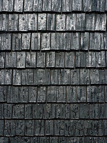 shou sugi ban. wood siding