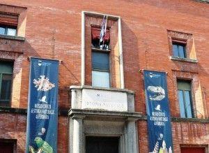 Il Museo di Storia Naturale di Ferrara presenta i suoi nuovi laboratori e le attività culturali per la città