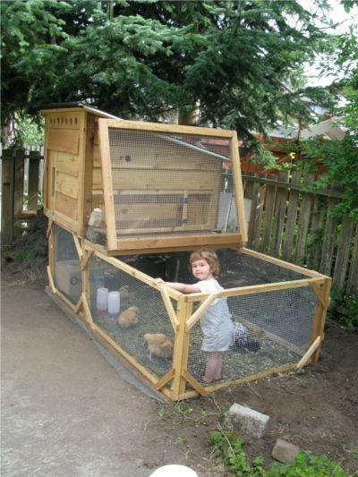 Best 25 chicken coop pallets ideas on pinterest for Movable pallets