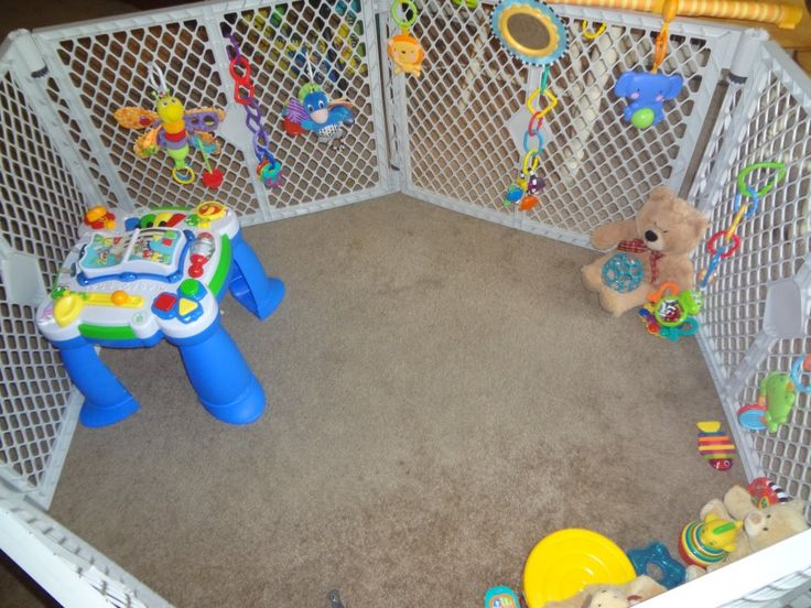 Carter's playpen.  This thing saved my life and I can thank pinterest for the idea.  He loves to play in his own space and its easy to customize by hanging baby toys (almost all baby toys come with hooks for the carseat, crib etc).