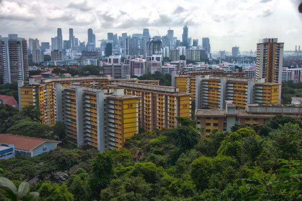 Alexandra Board Walk - Public Housing #PublicHousing #AlexandraBoardWalk #Singapore