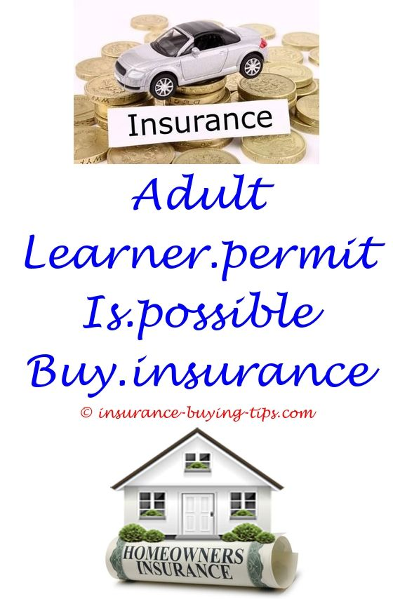 insurance when buying a car uk - buy hdfc term insurance online.small farmers buy crop insurance auto insurance when buying a used car south country health insurance to buy a scooter 3861630940
