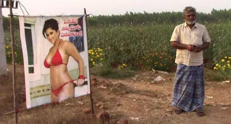 Agricultor Usa Poster De Atriz De Filmes Adultos Para Proteger a Sua Plantação Do Mau Olhado