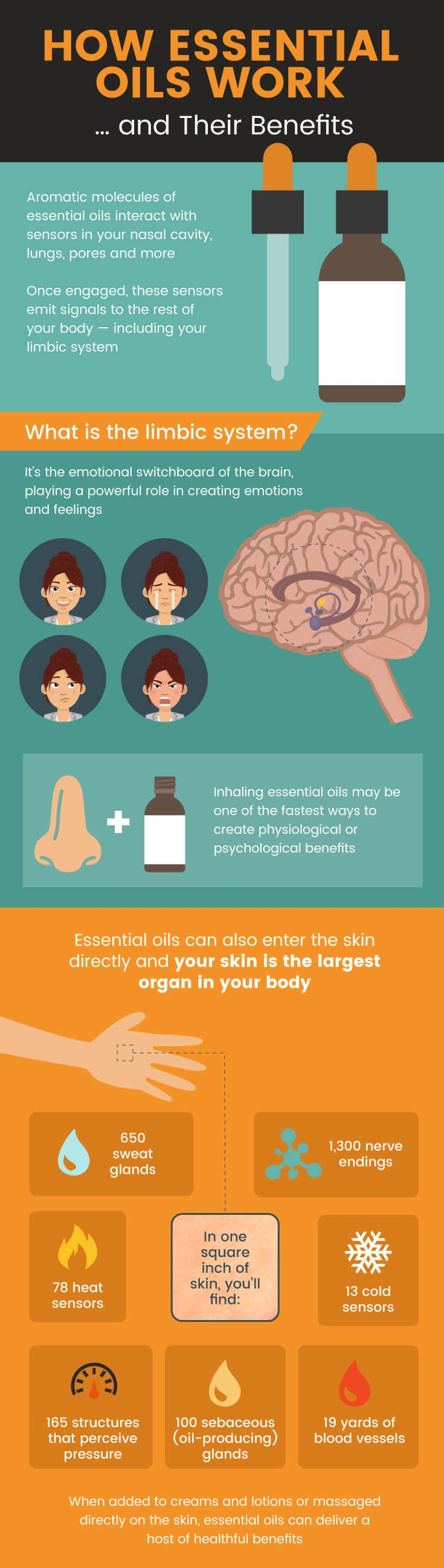 The compounds in essential oils can get into our cells - even crossing the blood-brain barrier! - to provide them with extra support.