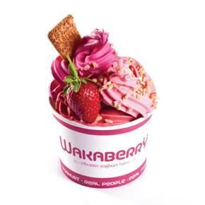 WAKABERRY OPEN DAY INTERVIEWING SATURDAY 12 OCTOBER 2013 FROM 8H30 AM TO 12H00:  Please bring your CV & n Picture with you.  ADDRESS: Cnr of 131 York Street & Davidson Road, Caledon Square, George, 6530  POSITIONS AVAILABLE: - Store Manager - Shift Supervisor - Senior WakaCrew - Junior WakaCrew - Trainee's  Wakaberry is a self-service frozen yoghurt bar. Staff should always exude positivity and friendliness