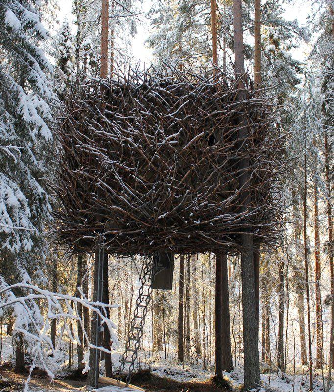 The Bird's Nest | Treehouse in Sweden #luxury #camping #scandinavia #nevergrowup