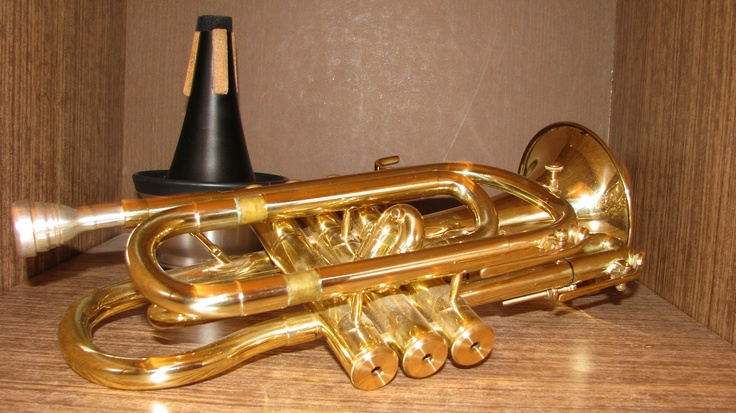 A musical instrument of my son.