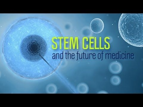 Stem Cells and the Future of Medicine - Research on Aging   More Info at http://bobbywan.jeunesseglobal.com/YES.aspx