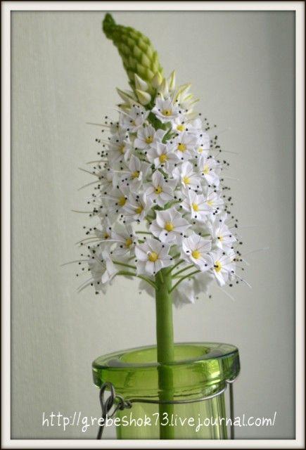 Эремурус « Керамическая флористика. Цветы из холодного фарфора. Уроки и мастер-классы