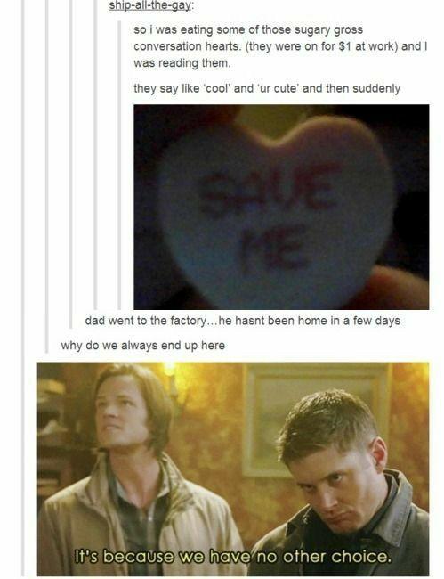 That's amazing! Hahaha