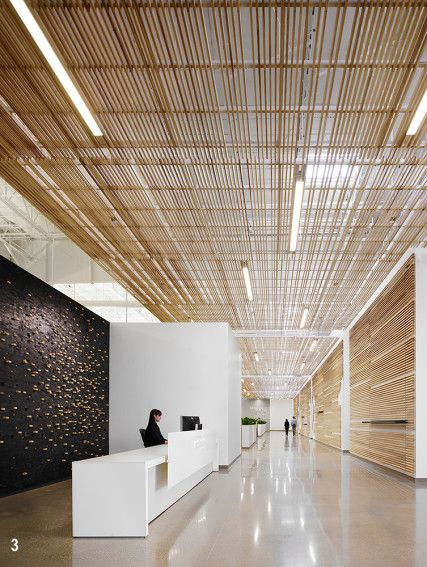 216 Best Ceilings Images On Pinterest