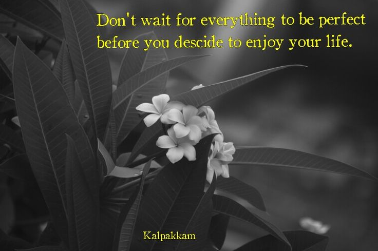 Don't wait for perfection