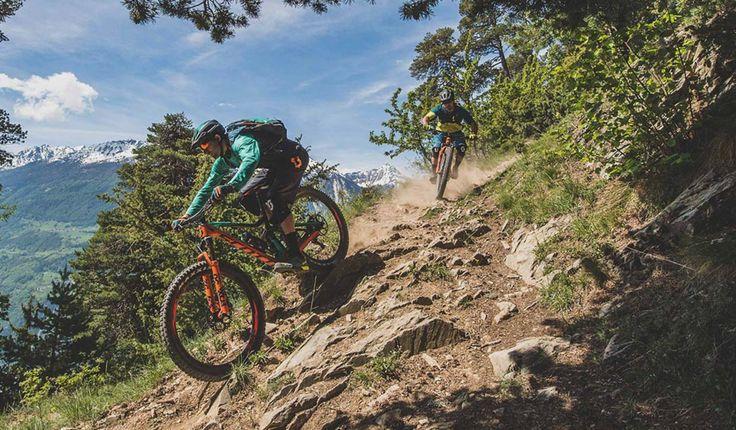 Scott Genius | Any trail, any time