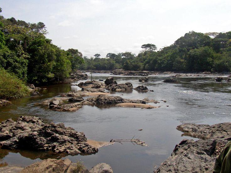 Okapi Wildlife Reserve, Orientale Province, Democratic Republic of the Congo. Inscription in 1996. Criteria: (x)