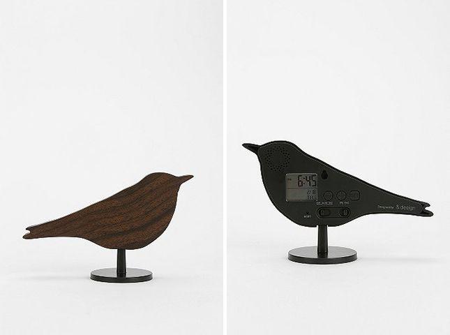 //cellar -- bird alarm clock
