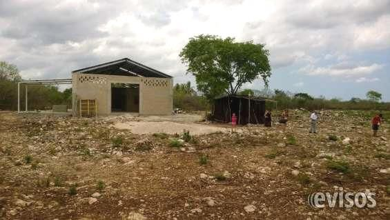 Rento-Vendo terreno en Tetiz Yucatan  Terreno en Tetiz Yucatan  cerca  Cervecería Modelo con una nave de 250 m2 abilitada con oficina, ...  http://tetiz.evisos.com.mx/rento-vendo-terreno-en-tetiz-yucatan-id-617571