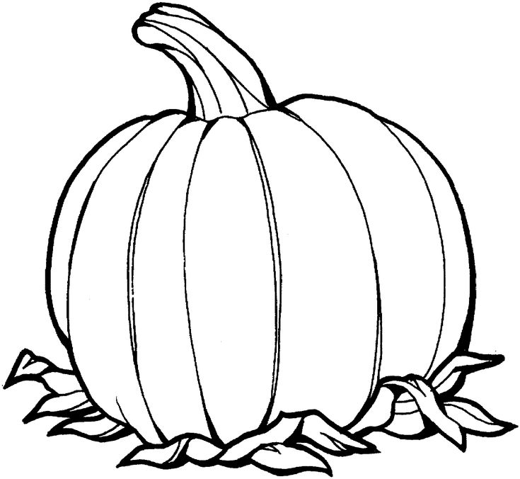 Amazing Of Stunning Pumpkin Patch Coloring Page W