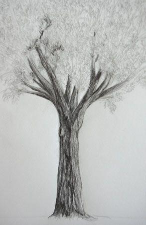 17 meilleures id es propos de comment dessiner un arbre sur pinterest dessiner un arbre. Black Bedroom Furniture Sets. Home Design Ideas