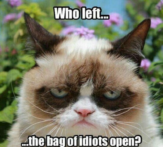 Bag Of Idiots #Bag, #Best-Memes, #Cool-Memes, #Funny-Memes, #IDIOTS, #Meme, #Memes