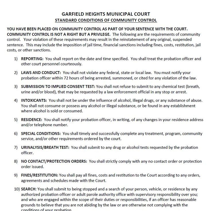 """Court Orders (""""Conditions"""") Sample resume, Court order"""