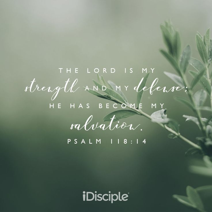 Psalm 118:14 - The LORD is my strength and my defense; he has become my salvation.