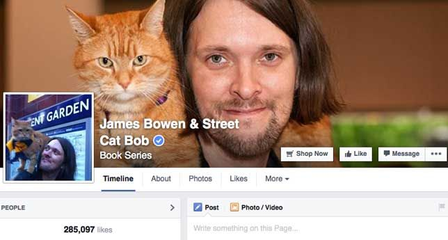 Bob the cat Facebook page