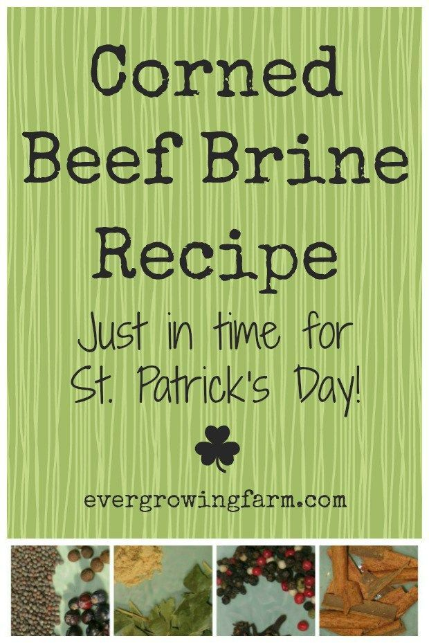 Corned Beef Brine Recipe