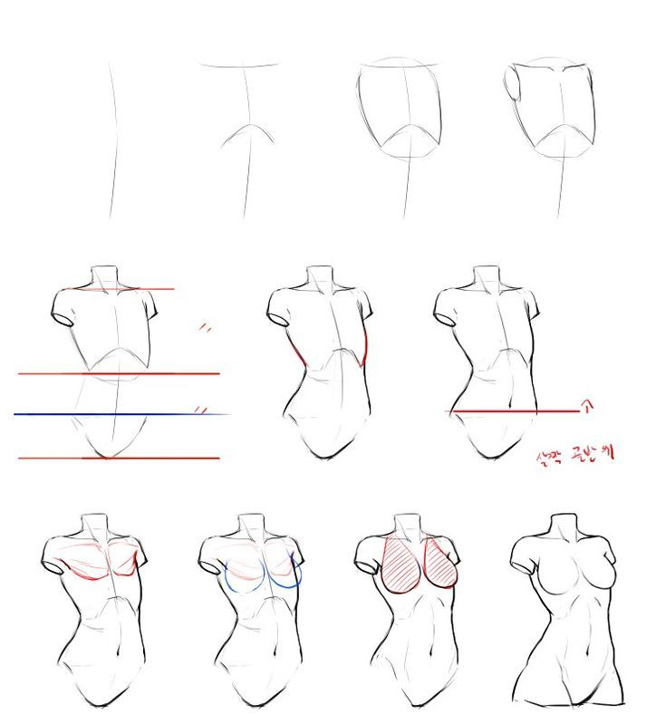 Reference guide step by step drawing female torso. Practice drawing bodies! #drawings #art
