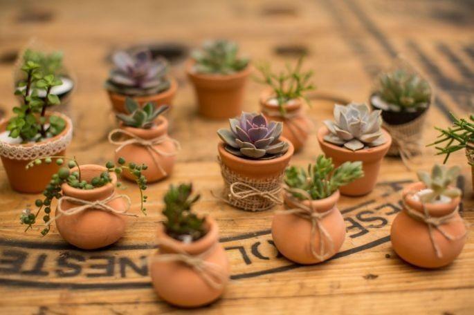 Potinhos de cerâmica com suculentas -  Lembrancinhas de casamento