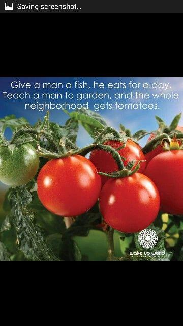https://m.facebook.com/FoodIsFreeSaunders