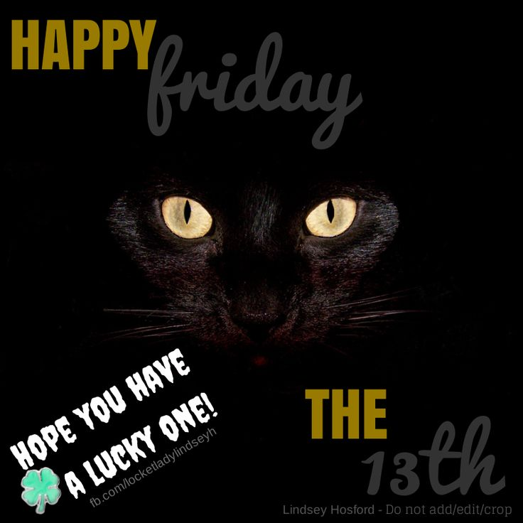 39 Best Days Friday The 13th Images On Pinterest Kitty