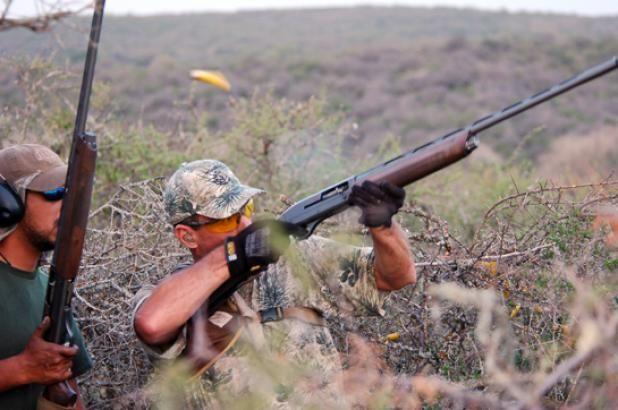 Dove Hunting Tips from the Dovenator